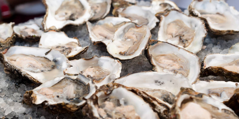oyster-product